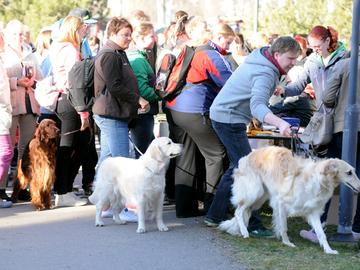 Kohderyhmänä puolitoista miljoonaa koiranomistajaa