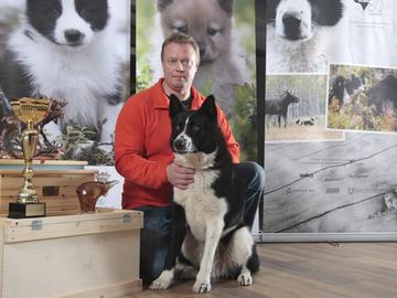 Kuohukorven Jaki on karjalankarhukoirien uusi Suomen mestari