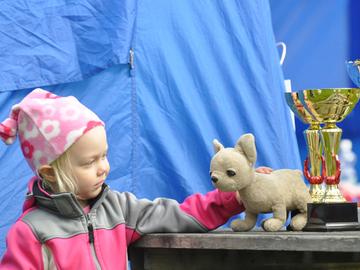 Koiranpäivänä 24.4. tapahtuu ympäri Suomea