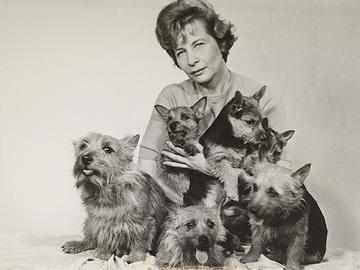 Gitta Ringwall – Elämäntyönä koirat