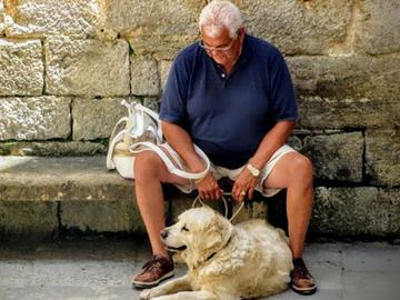 Lemmikkieläimet estävät vanhusten itsemurhia