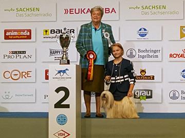 Junior handlerien MM-hopea Suomeen