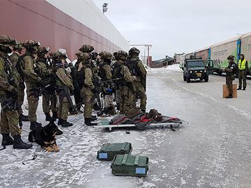 Armeijan koiratarhoilta ei komisteta keskeytystilastoja