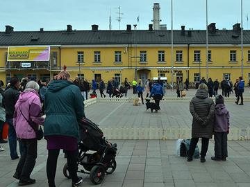 Koiranpäivä näkyi ympäri Suomen