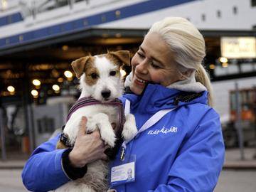 Kolmasosalla Suomeen tuoduista koirista jälleen puutteita papereissa