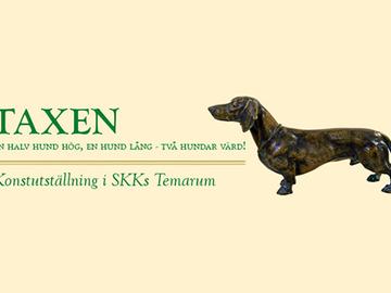 Mäyräkoiranäyttely Ruotsin kennelmuseossa
