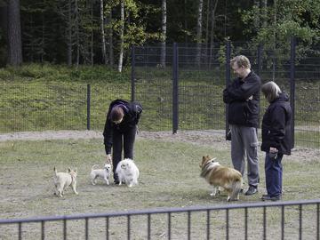 Nastolaan uusi koirapuisto