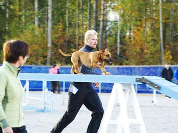 Suomen suurin koiraurheilutapahtuma loppuu