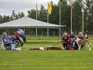 Tuomarinkartanon koiraurheilukeskuksen tulevaisuus on turvattu